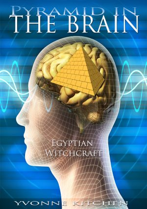 Pyramid in the Brain